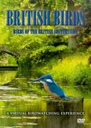 British Birds - Birds Of The British Countryside