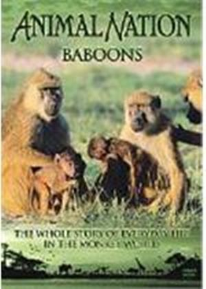 Animal Nation - Baboons - The Whole Story
