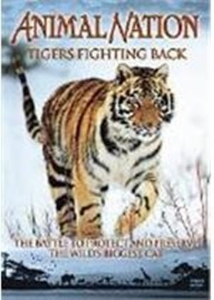 Animal Nation - Tigers Fighting Back