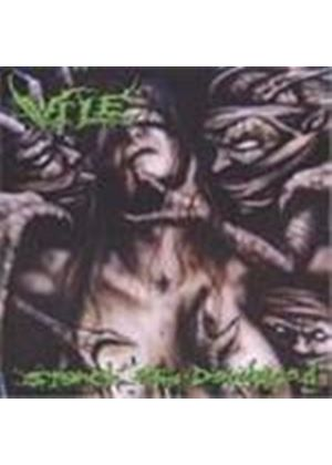 Vile - Stench Of The Deceased