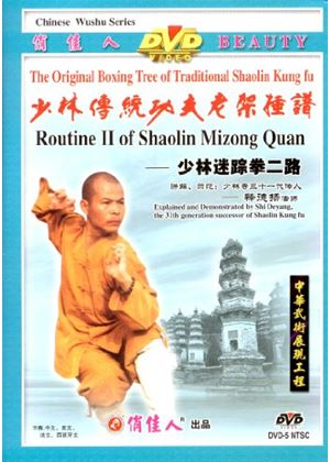 Routine 2 Of Shaolin Mizong Quan