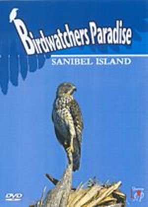 Birdwatchers Paradise - Sanibel Island