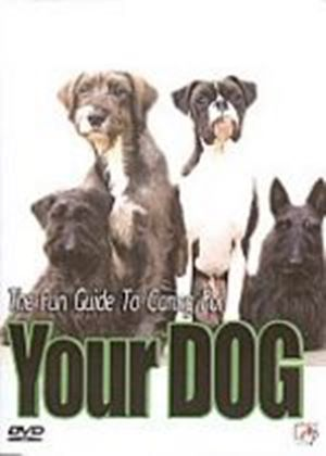 Fun Guide To Caring For Your Dog, The
