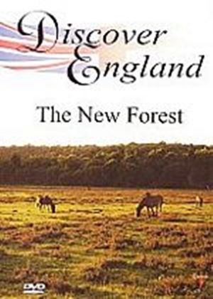 Discover England - The New Forest