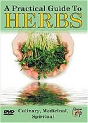 Practical Guide To Herbs