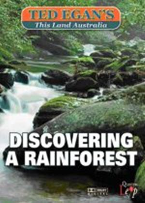 Discovering A Rainforest
