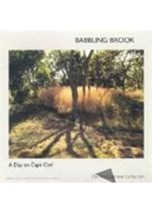 A DAY ON CAPE COD - BABBLING BROOK