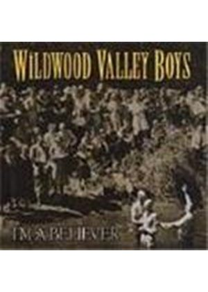 Wildwood Valley Boys - I'm A Believer