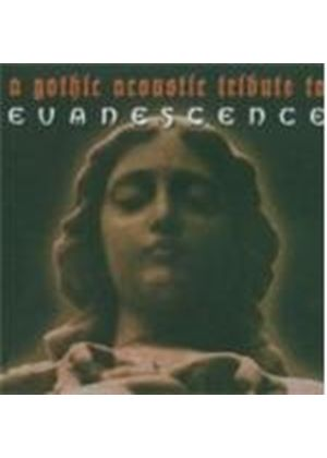 Various Artists - Gothic Acoustic Tribute To Evanescence, A