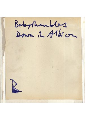 Babyshambles - Down In Albion (Music CD)