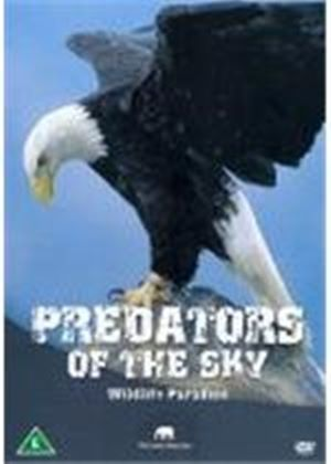 Wildlife Paradise - Predators In The Sky DVD
