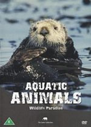 Wildlife Paradise - Aquatic Animals