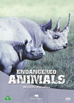Wildlife Paradise - Endangered Animals