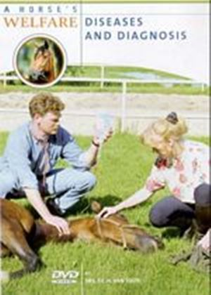 A Horses Welfare - Diseases And Diagnosis