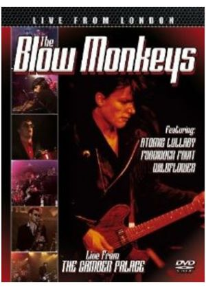 Blow Monkeys (The) - Live From London (+DVD)