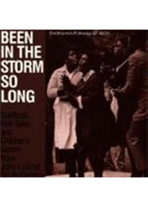 Various Artists - Been In The Storm So Long