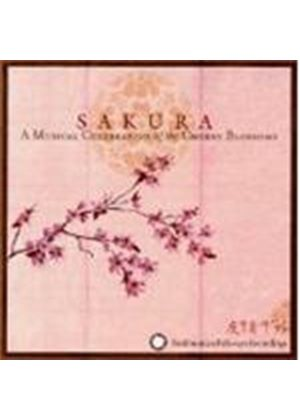 Various Artists - Sakura - A Musical Celebration Of The Cherry Blossoms