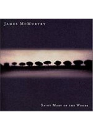 James McMurtry - Saint Mary Of The Woods (Music CD)