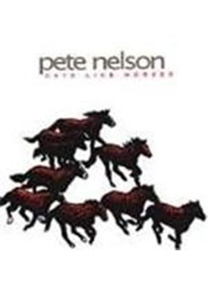 Pete Nelson - Days Like Horses