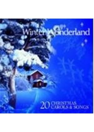 Various Artists - Winter Wonderland Favourite Christmas