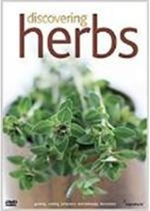 Discovering Herbs