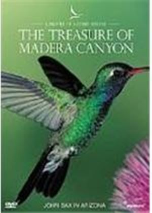 Profiles Of Nature - The Treasure Of Madera Canyon