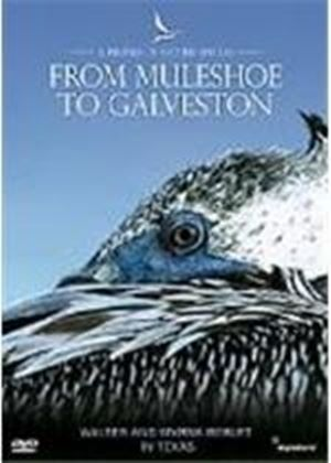 Profiles Of Nature - From Muleshoe To Galveston