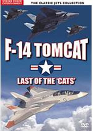 F-14 Tomcat - Last Of The Cats
