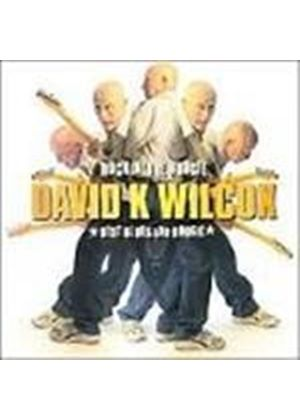 David Wilcox - Rockin' The Boogie