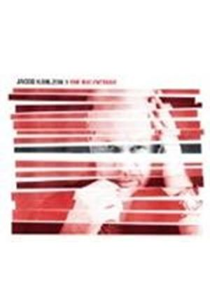 Karlzon, Jacob - Big Picture, The (Music CD)