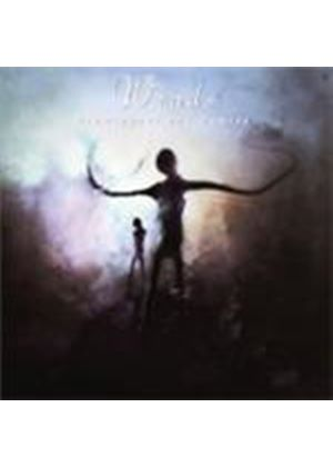 Winds - Prominence And Demise (Music Cd)