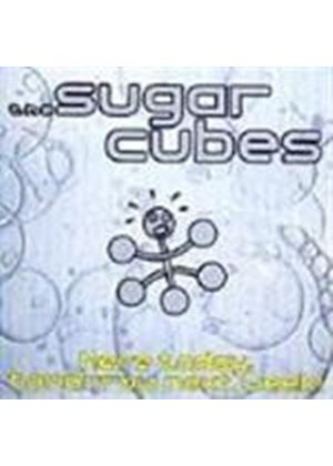Sugarcubes (The) - Here Today Tomorrow Next Week