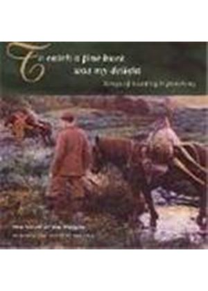Various Artists - To Catch A Fine Buck Was My Delight