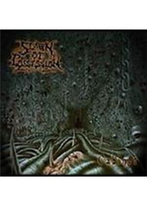 Spawn Of Possession - Cabinet (Music CD)