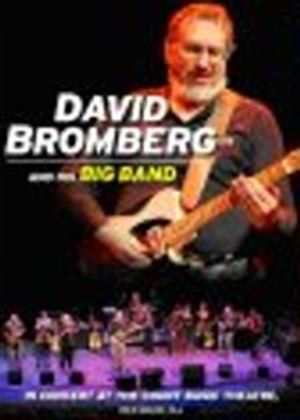 David Bromberg & His Big Band In Concert