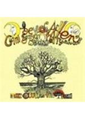 Daevid Allen & Mother Gong - Owl In The Tree (Music Cd)