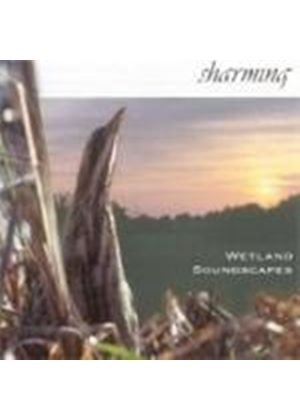 Birdsong - SHARMING WETLAND SOUNDSCAPES