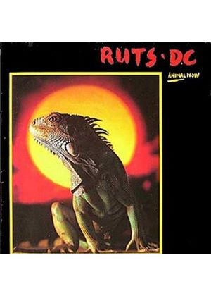 Ruts - Animal Now (Music CD)