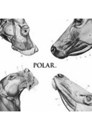 Polar - This Polar Noise (Music CD)