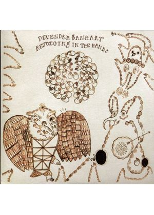 Devendra Banhart - Rejoicing In The Hands (Music CD)
