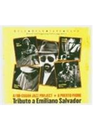 Juan Manuel Ceruto - Tribute To Emiliano Salvador, A