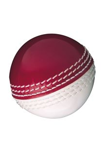 Skills Cricket Ball